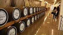金车威士忌酒厂